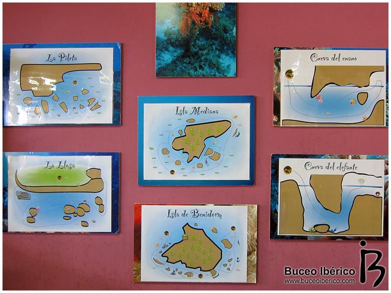 Inmersiones en Celacanto