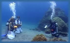 Bodas subacuáticas