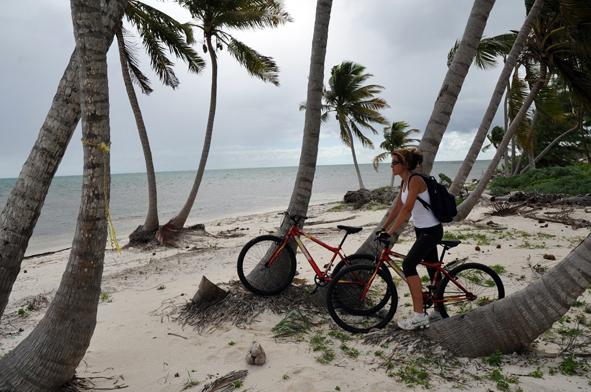 Bicicletas en la selva