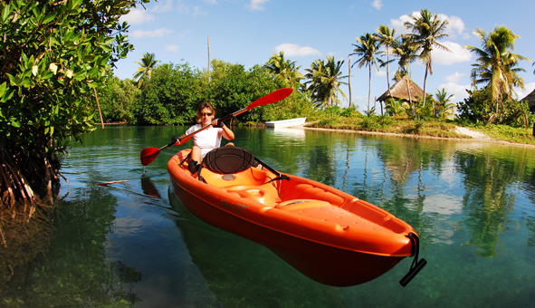 Kayaks en el manglar