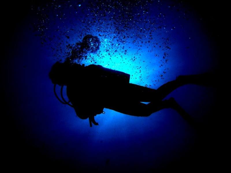 Buceo Profundo con Bubbles Sea