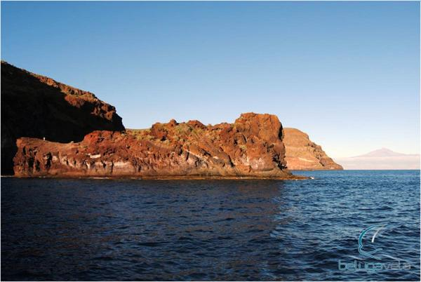 Crucero Vela y Buceo en Tenerife y La Gomera