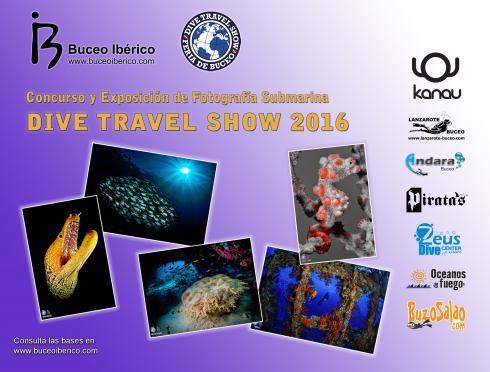Votación Concurso de Fotografía Submarina DTS 2016 - Underwater Photography Contest Voting DTS 2016