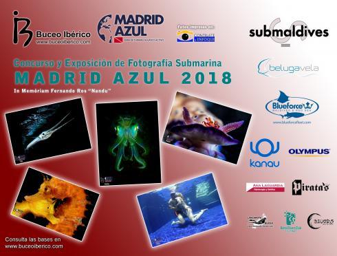 Concurso de Fotografía Submarina Madrid Azul 2018