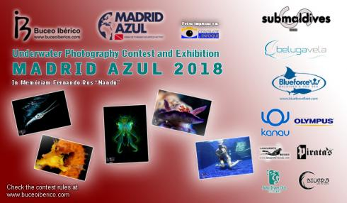 Underwater Photo Contest Madrid Azul 2018