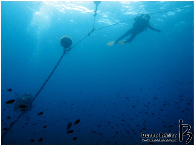 Planeta Azul, inmersión en Piles II