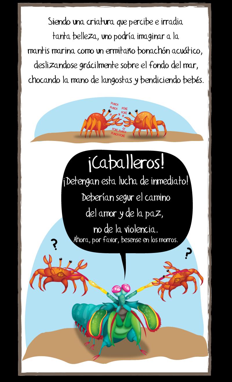 mantis-marina-4