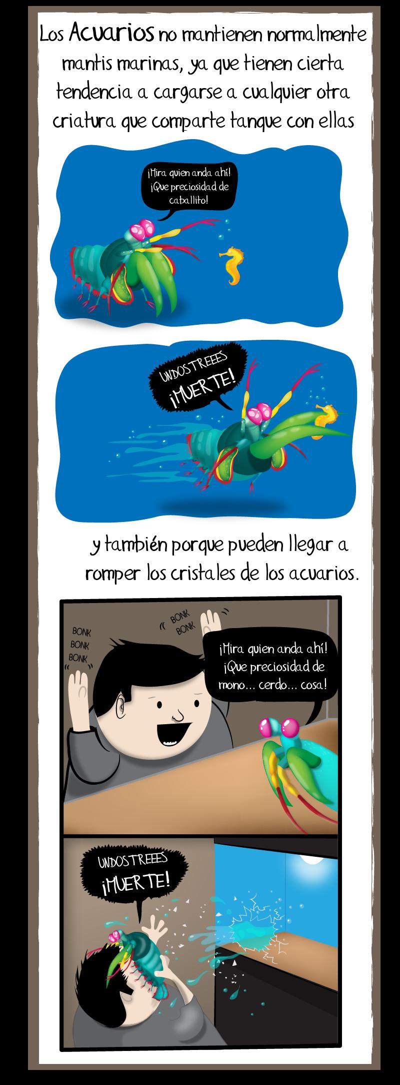 mantis-marina-6