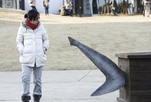 ataúdes-para-tiburones04