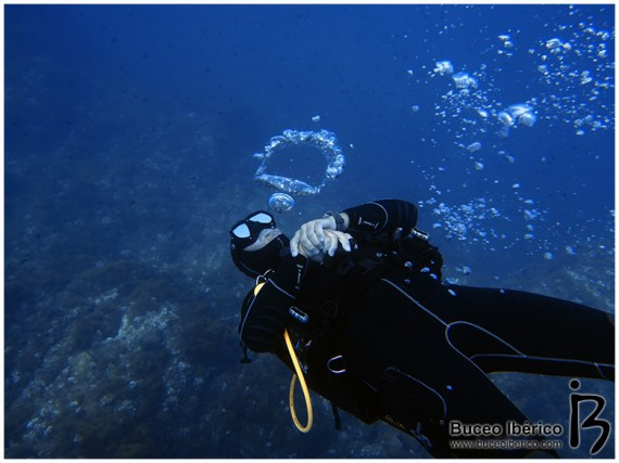 Consejos para ayudar al guía en la inmersión de buceo