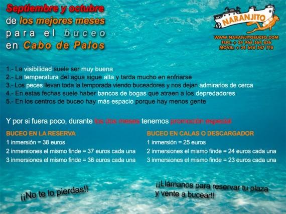 naranjito-buceo-promocion-septiembre-octubre-2014