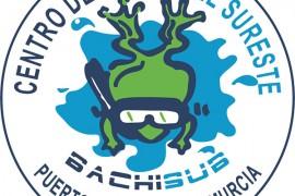 bachisub-logo