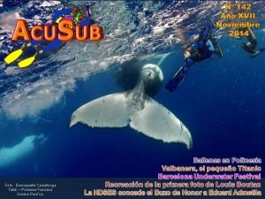 Acusub edición nº 142