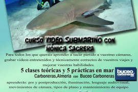 curso-video-submarino-monica-sagrera-octubre-2015