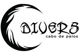 divers-logo-900X487