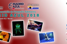 DTS banner concurso dts 2018