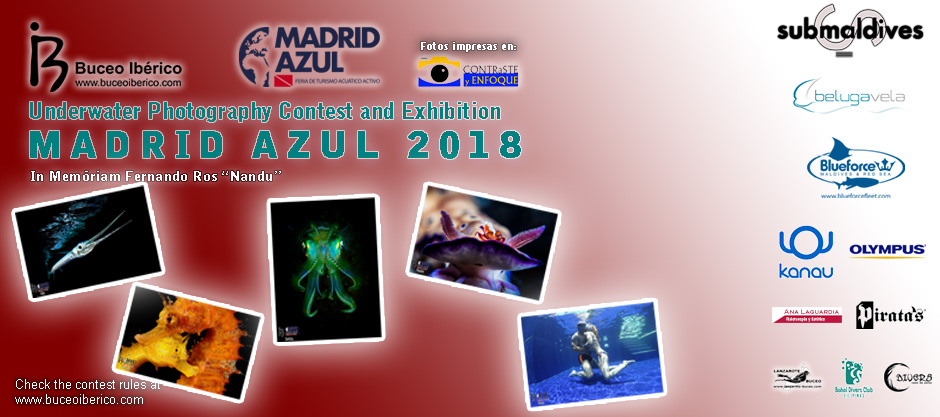 Underwater Photography Contest Madrid Azul 2018