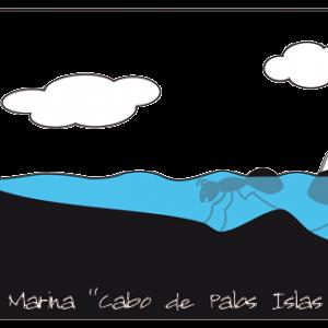 Diseño Camisetas Islas Hormigas