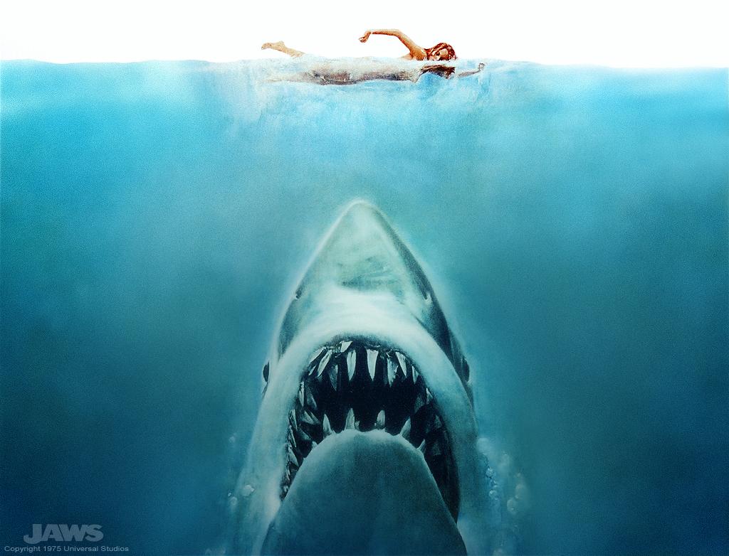 ¿Habéis visto el tamaño del bicho? Pero si parece que hubieran injertado tres tiburones blancos para hacer uno solo...