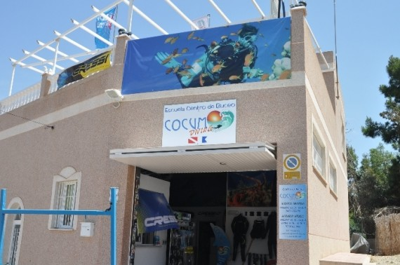 Cocum Diving