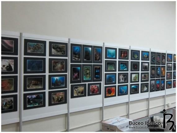 Concurso de Fotografia DTS 2012