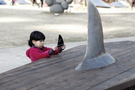 ataúdes-para-tiburones