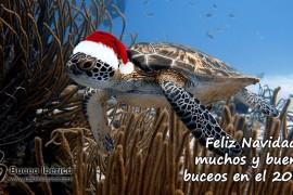 feliz-navidad-2013-g+