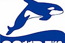 scuba-plus-logo