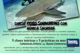 curso-video-submarino-monica-sagrera-octubre-2015