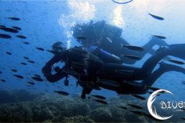 Sorteo 10 inmersiones de buceo en divers Cabo de Palos