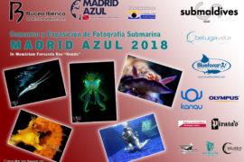 concurso-fotografia-dts-2018-en